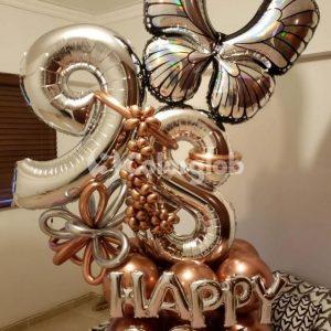 globos mariposa santo domingo